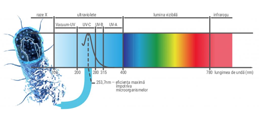 Despre lumina ultravioleta UV-C
