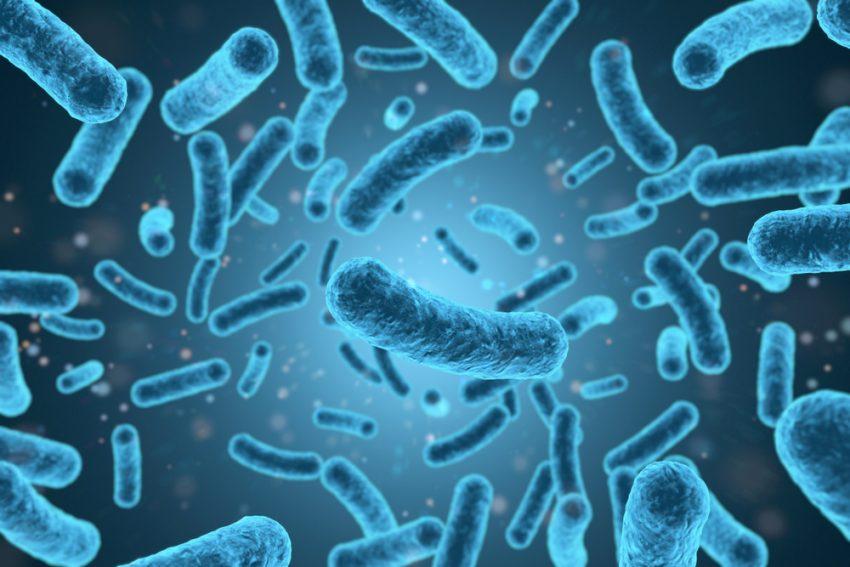 Cum ne protejam de infectia cu Listeria?