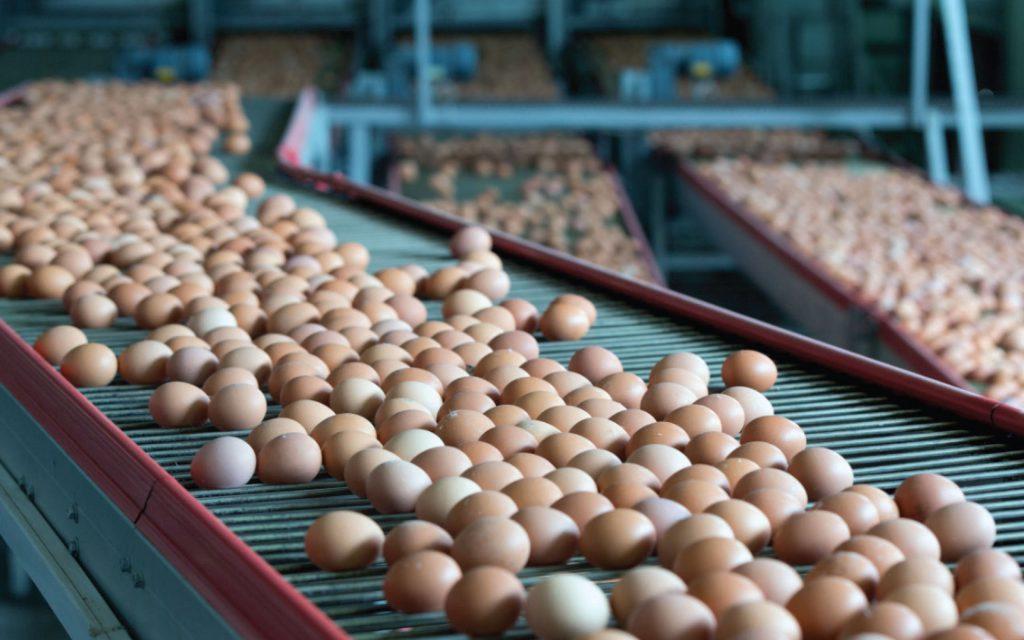 Dezinfectia cu lumina ultravioleta UV-C in industria alimentara